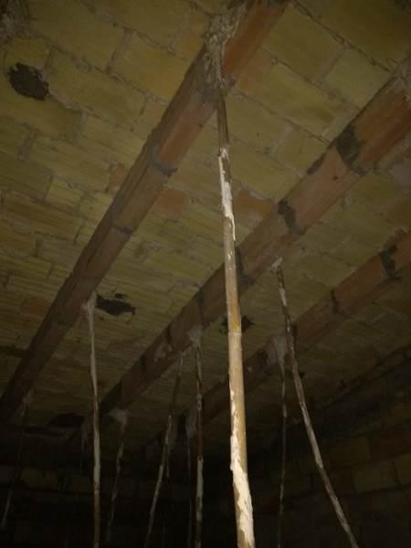 ¿Es este techo normal?