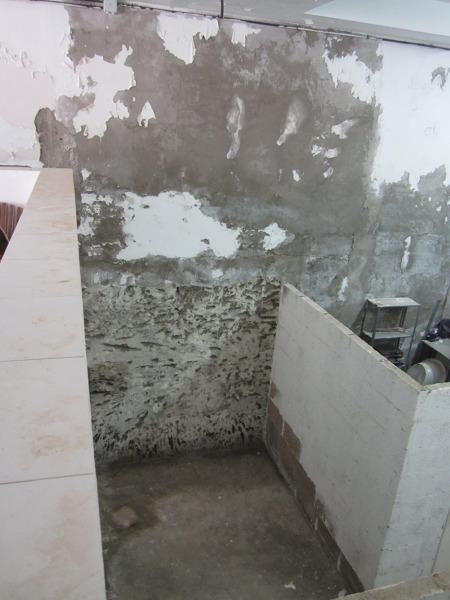 ¿Cómo rehabilitar pared de carga de edificio con humedades?