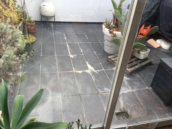 ¿Existe un pavimento sintético, ligero, impermeable, transitable y estético?