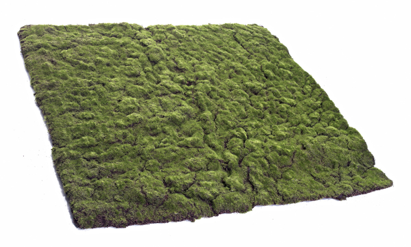 ¿Cuánto cuesta el musgo artificial para jardines verticales?