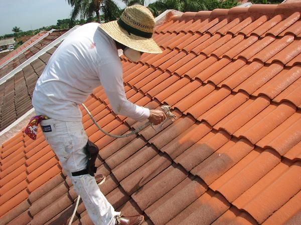 Cu nto costar a pintar un tejado habitissimo for Pintura para tejas