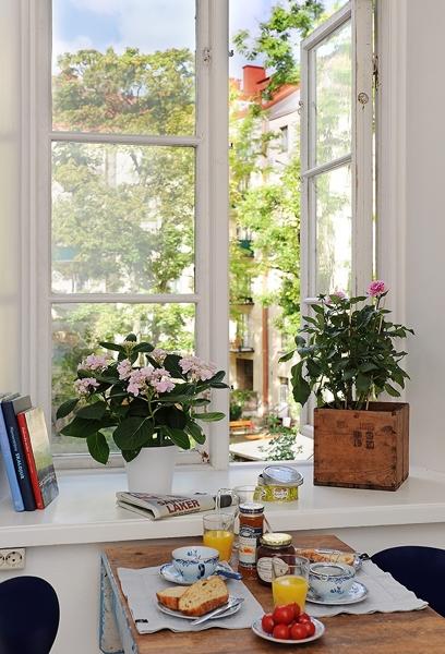D nde puedo encontrar ventanas parecidas habitissimo for Donde puedo encontrar papel decorativo