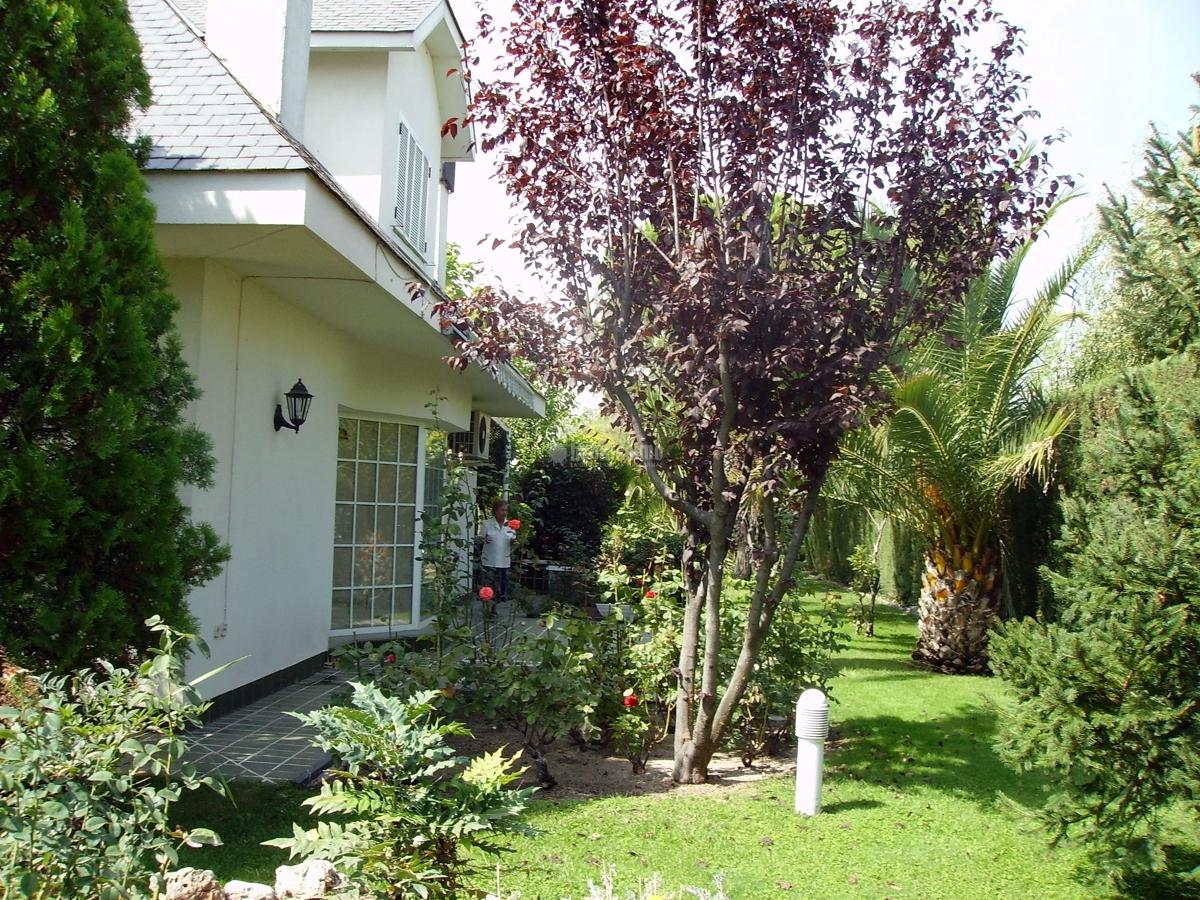 Hacer mantenimiento jardin particular illescas toledo - Presupuesto jardin ...