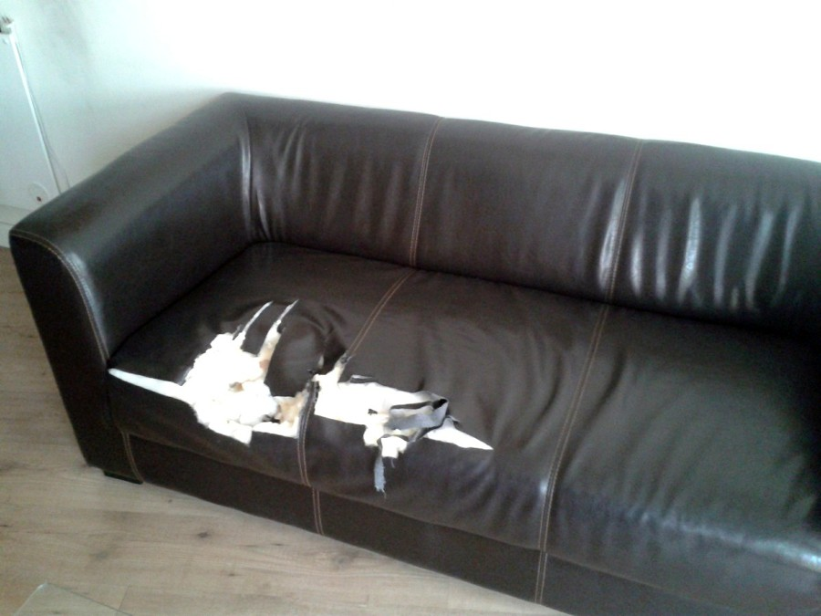 Tapizar sofa zaragoza zaragoza habitissimo - Precio tapizar sofa ...