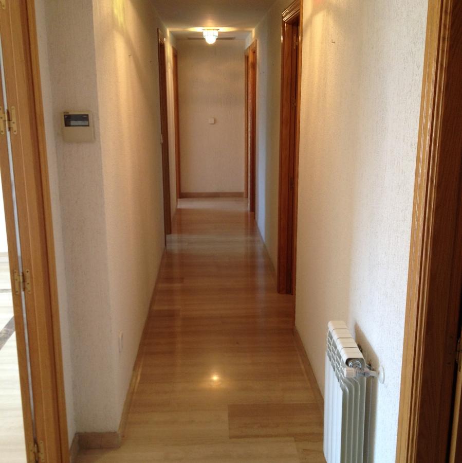 Pintar piso vac o centro granada granada habitissimo for Presupuesto pintar piso 100m2