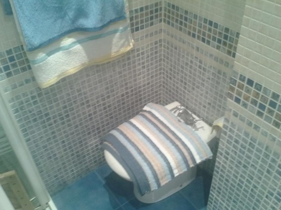 Hacer peque a reforma de ba o e instalar plato de ducha for Instalar ducha