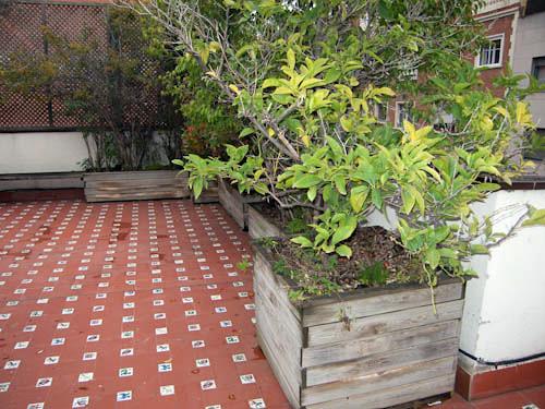 Realizar reparaci n de jardineras en terraza barcelona - Jardineras para terrazas ...