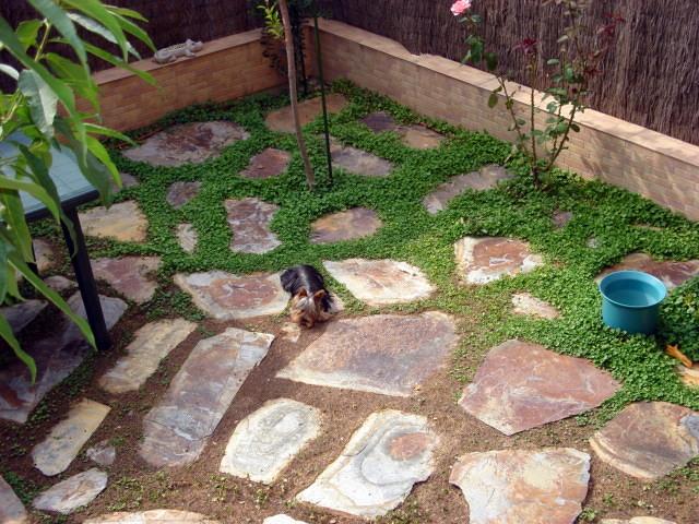 Solar jardin sese a viejo toledo habitissimo - Suelos para jardines pequenos ...