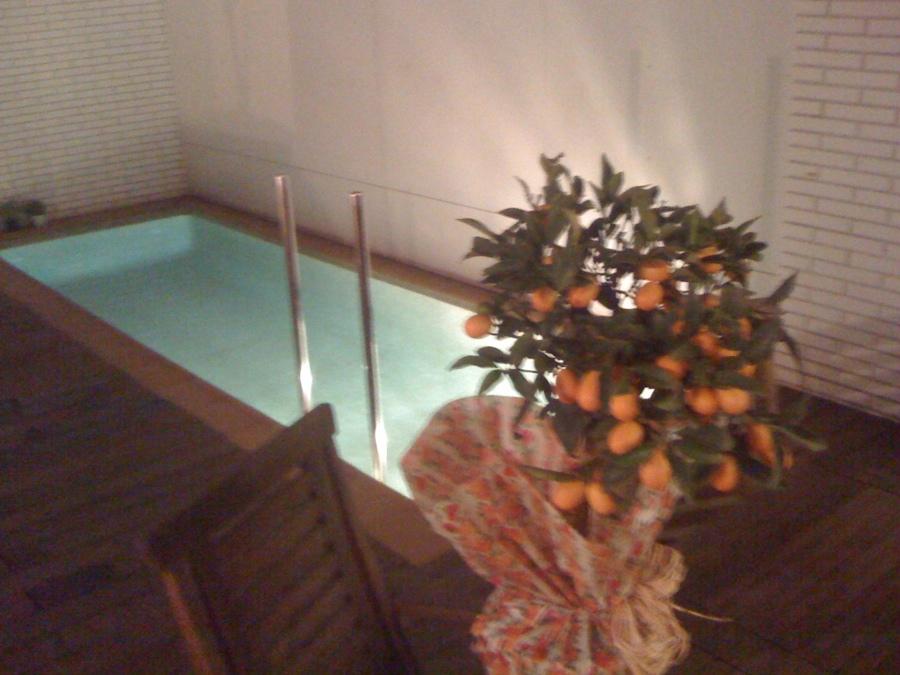 Limpieza y puesta a punto de piscina peque a barcelona for Precio piscina pequena obra