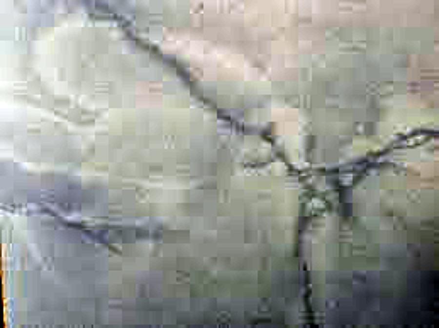Pavimento de marmol las palmas de gran canaria las - Pavimentos las palmas ...