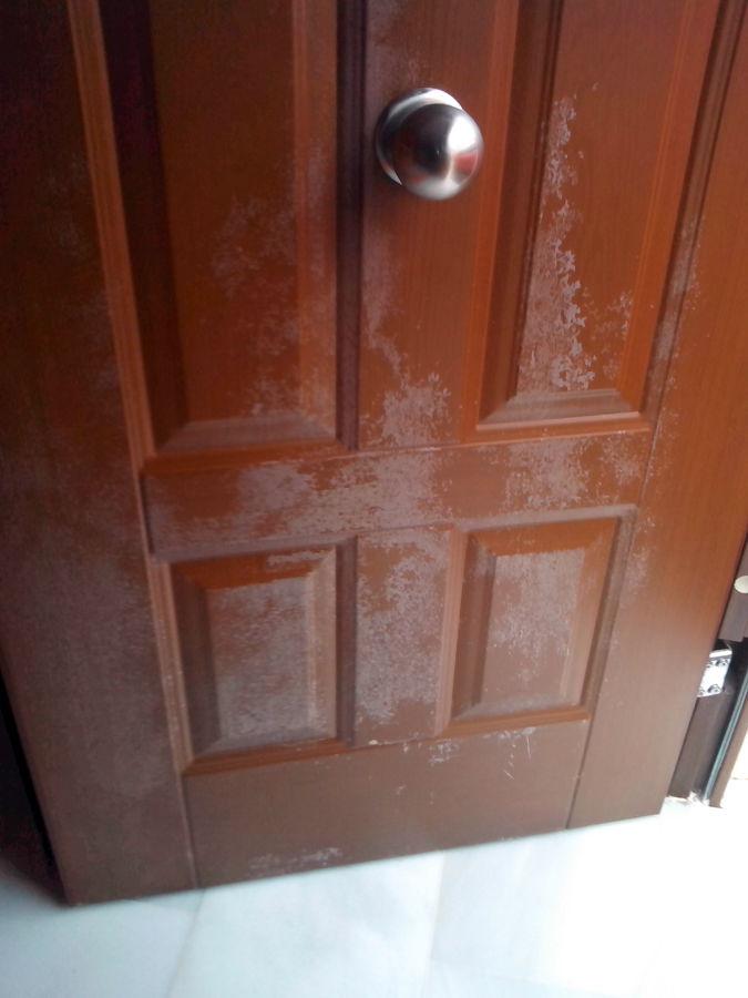 Lacar puerta met lica algeciras c diz habitissimo for Puerta metalica exterior
