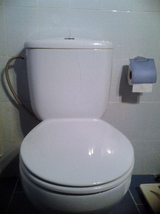 cambiar cisterna de wc modelo roca victoria azul madrid