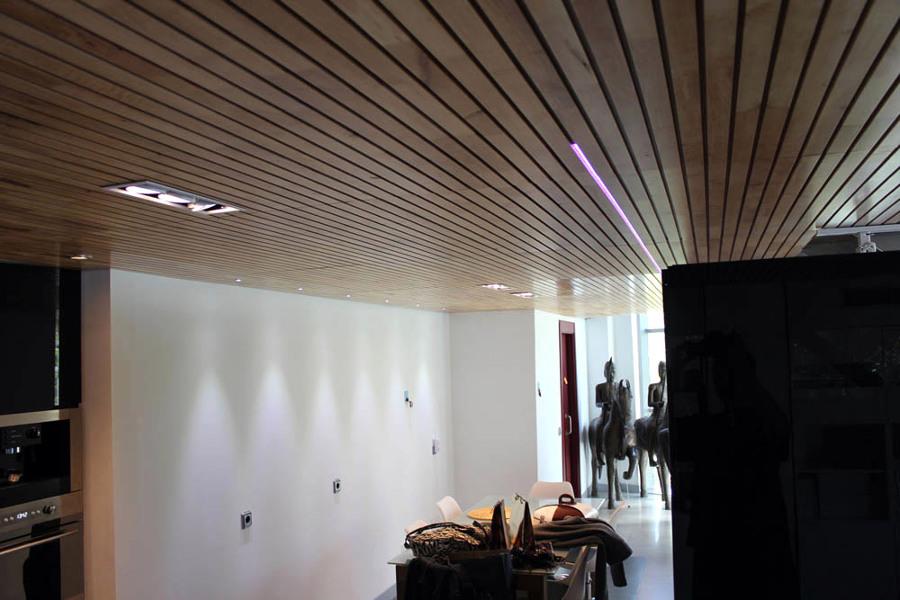 Construir forjados en un loft madrid madrid habitissimo - Iluminacion falso techo ...
