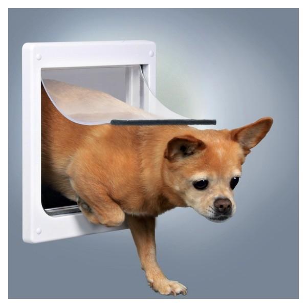 Instalar puerta para perro barcelona barcelona habitissimo - Puerta vaiven para perros ...