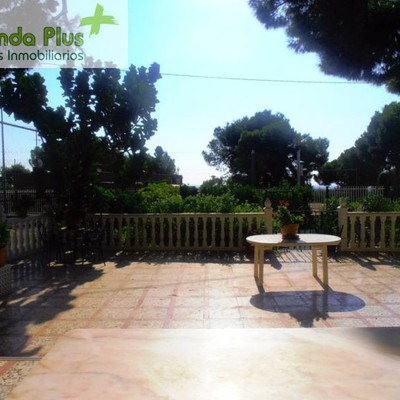 11- Vista de la zona infantil y naranjos y limoneros desde la porchada techada_472164