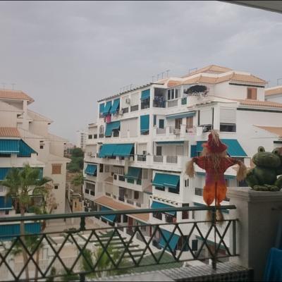 Acristalamiento de terraza mata torrevieja alicante for Acristalamiento de terrazas precios
