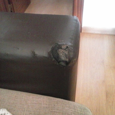 Tapizar 4 sillas con respaldo tapizar brazos sof - Tapiceros en granada ...