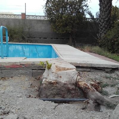 Proyectar hormigon en piscina de almeria pechina for Presupuesto de piscinas de hormigon