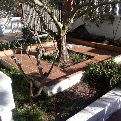 Puesta a punto jardin el pont de vilomara i rocafort - Punto jardin ...