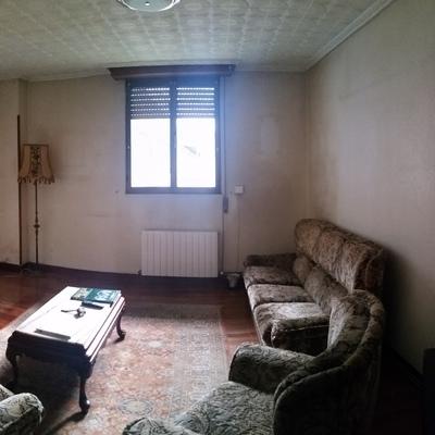Quitar gotele y pintar piso en bilbao bilbao vizcaya for Presupuesto pintar piso 100m2