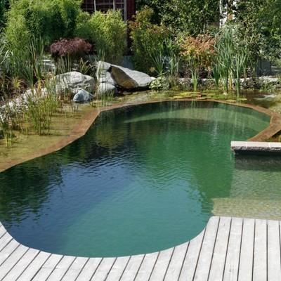 Construir piscina natural rub barcelona habitissimo for Piscina rubi