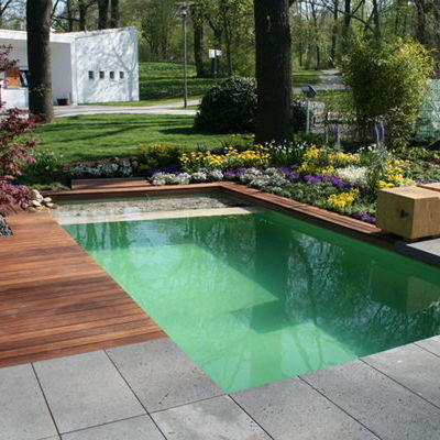 Construir piscina natural vallirana barcelona for Coste hacer piscina
