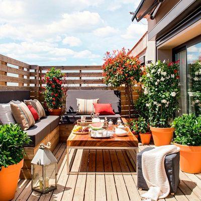 Reformar terraza 20m2 dormitorio 12m2 y salon 18 m2 for Reformar terraza ideas