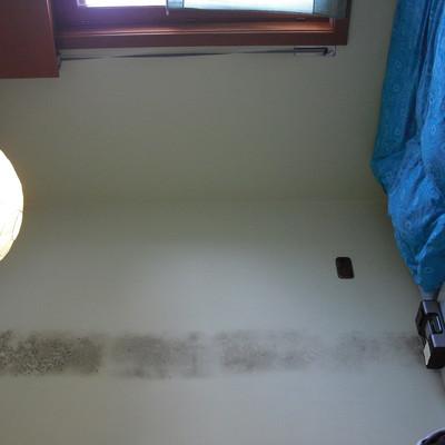 Pintar habitaci n con moho armentia lava habitissimo - Precio pintar habitacion ...