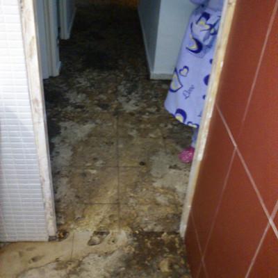 Limpiar y pintar piso san vicente de raspeig alicante for Precio pintar piso