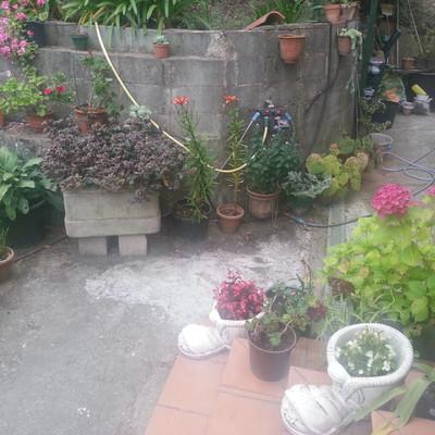 Pavimentar zona jard n exterior contiguo a la vivienda for Garage de la zone