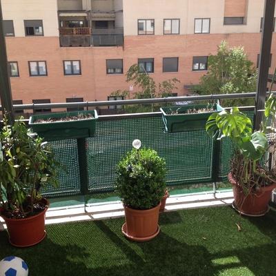 Instalar celos a met lica en terraza madrid madrid for Como ahuyentar gatos del jardin