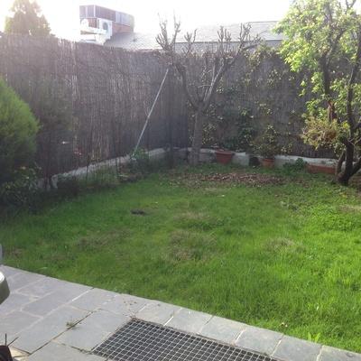 Renovar jard n arroyofresno madrid madrid habitissimo for Disenar jardin online