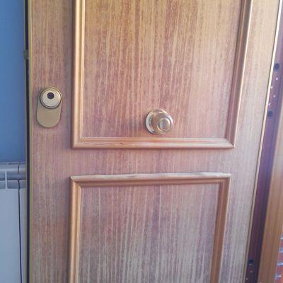 Panelar puerta de entrada con aluminio zaragoza for Presupuesto puerta aluminio
