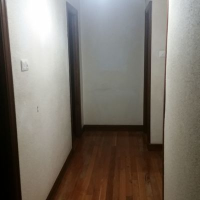 Quitar gotele y pintar piso bilbao bilbao vizcaya for Presupuesto pintar piso 100m2