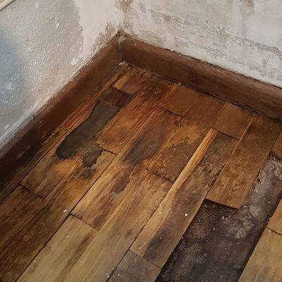 Reparar parquet estropeado por filtraci n del ba o - Reparar parquet sin acuchillar ...