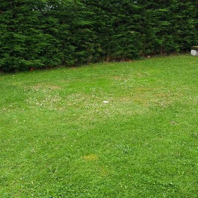 Creacion de solera de hormigon en jardin para instalacion - Presupuesto jardin ...