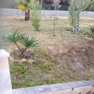 Dise o del jardin en finca de montuiri son mir for Jardin 800m2