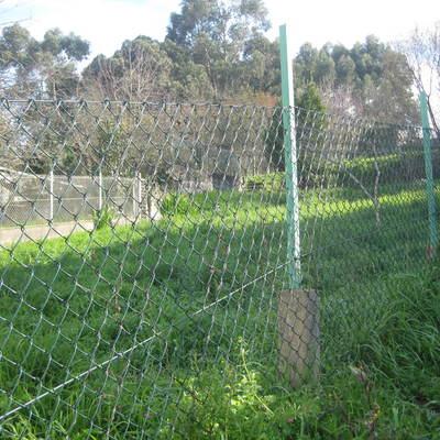 Cortar hierbas y podar vigo pontevedra habitissimo - Cortar hierba alta ...