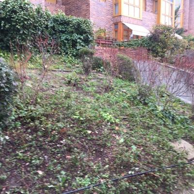 Jard n ardales aravaca madrid madrid habitissimo - Disenar jardin online ...