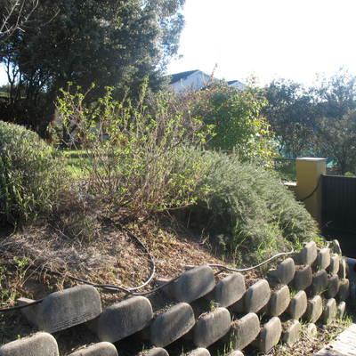 Precio jardineros guadalajara habitissimo for Jardin 800m2