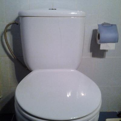 Cambiar cisterna de wc modelo roca victoria azul madrid for Inodoro modelo victoria