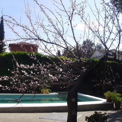 Gunitar piscina castelldefels barcelona habitissimo for Piscinas gratis barcelona