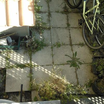 Pavimentar peque o patio delantero de vivienda - Morteros autonivelantes precios ...