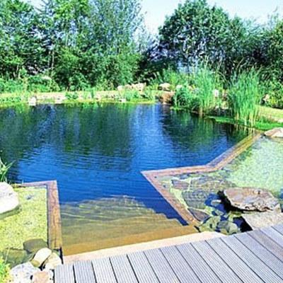 piscina-ecologica-2_602544