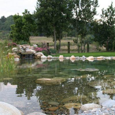 piscina-ecologica-8_602547