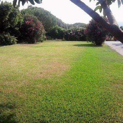 piscina jardin_411107
