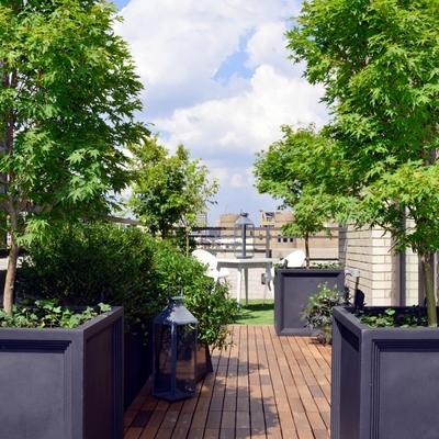 Ajardinar terraza atico madrid capital avda de la paz madrid madrid habitissimo - Cerrar terraza atico ...