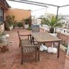 Arreglar y cambiar plantas terraza con 3 palmeras