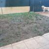 Hormigonar 26 m2 de jardín