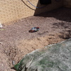 Pavimento suelo de hormigon
